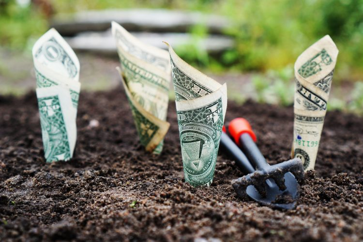 Planting money in the ground with a spade.